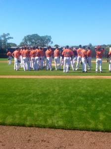 The whole group of pitchers in camp