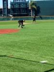Machado fielding ground balls